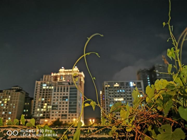 【體驗分享】HUAWEI P30 極光色 拍照實測 - 110