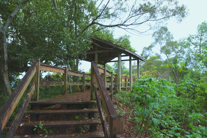 S步道|台中|草嶺楓仔林步道|清涼寺蝙蝠洞秘境|太平區