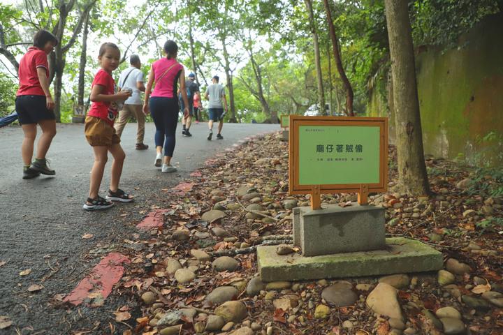 S步道|彰化|藤山步道|親民人氣市場步道|員林市