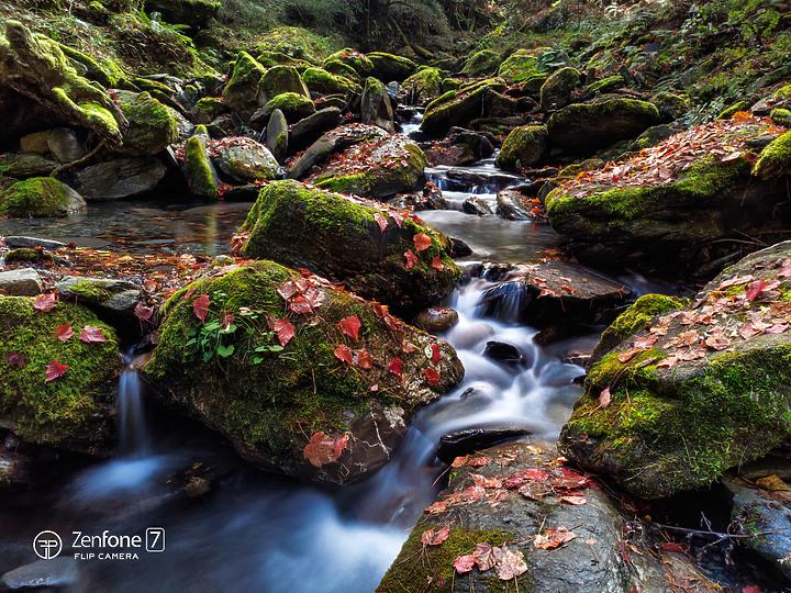 令人放心的旅遊攝影夥伴 ASUS ZenFone7 Pro  (圖多) - 61