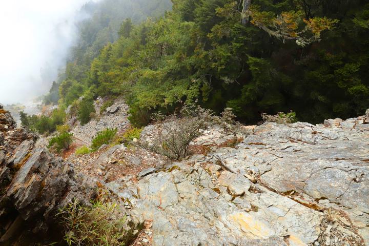 高山268|花蓮|羊頭山3035M(下集)|陡上陡下中橫小辣|秀林鄉