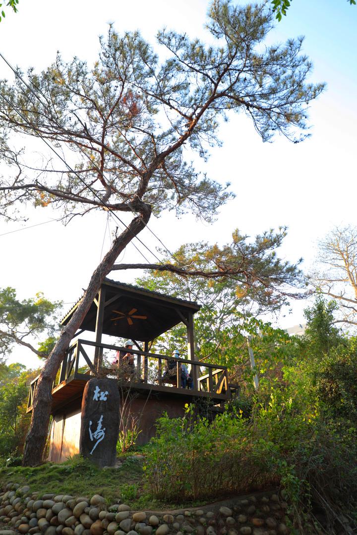 S步道|彰化|八卦山天空步道|悠遊大佛森林美景|彰化市