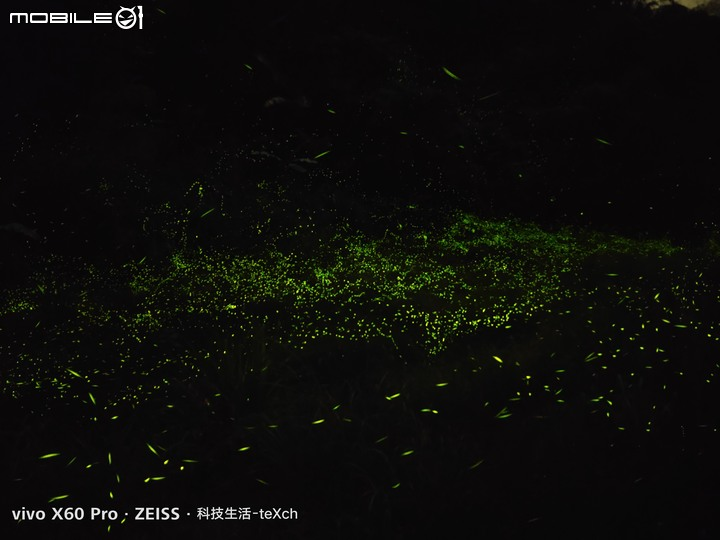 Vivo X60 Pro 詳細評測 - 拍螢火蟲這麼簡單?輕鬆紀錄生活的好手機 - 26