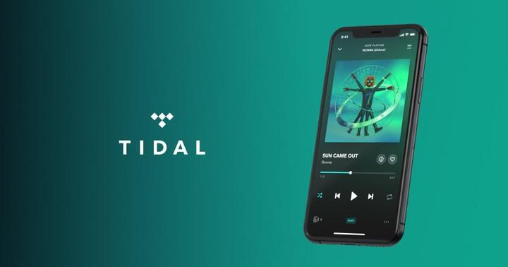 分享 Tidal 買便宜和 VPN 常用用法 - 2
